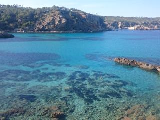 Detox & Reload holidays Ibiza