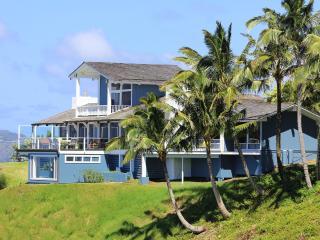 Best Coastline view in Kauai!