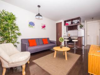 Nice & Cozy 2 Bedroom Apartment in Providencia, Santiago