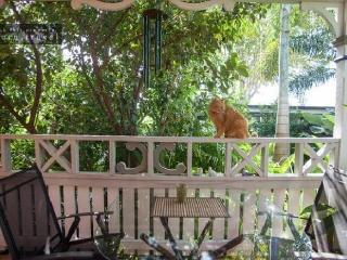 Paradise Cottage Brighton Brisbane North. Free unlimited wifi. Pet friendly.