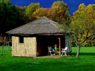 La cabane en paille