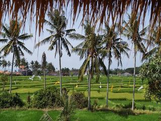 Villa Aist. 2 minutes Bali Bird Park.