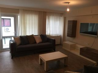 2 bed comfortable fully furnished spacious flat, Izmir