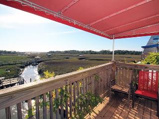 1 Marsh Creek Cove - Fabulous Salt Marsh Vistas, Tybee Island