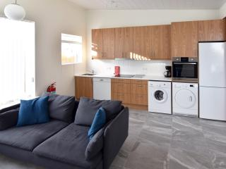 ★ NEW APARTMENT SUMMER SPECIAL - BOOK NOW! ★, Reykjavik
