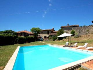 Villa with private pool 60 kms from Lucca and sea, Villa Collemandina