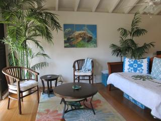 Romantic ocean view retreat w/ available car, Maunaloa