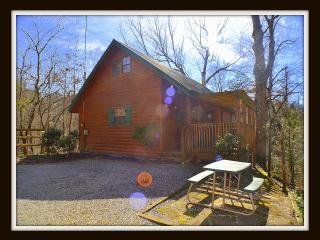 The Curious Bear Cabin Minutes to Gatlinburg