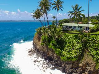 Oceanfront Promontory - an Unforgettable View!, Hilo