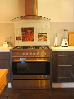 Gas stove/electric oven and canopy-kitchen