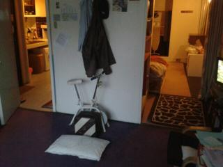 1 room in small flat, London
