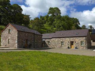 Rhianydd's Barn  (RHIANB), Llandeilo
