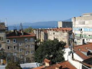 Huge apartment in the Rijeka city center