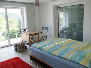 Vacation Apartment in Baden (Switzerland) - modern, central, comfortable (# 9478)