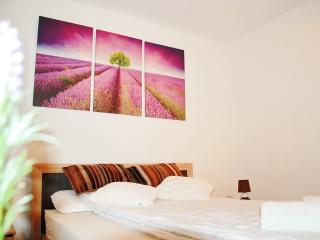 Ana  Apartment (2 rooms) - Iasi, Romania