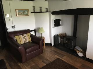 Cosy lounge with log burner.