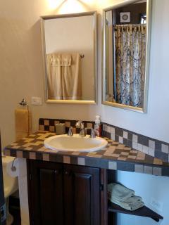 Guest suite bathroom.