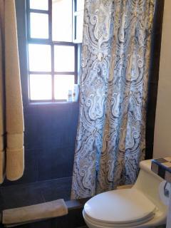 Guest suite shower.