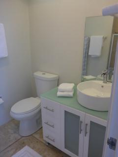 MBR en suite bath with walk in shower.