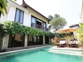 Executive Suite - two bedrooms villa, Seminyak