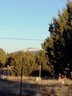San Fransisco Peaks view from Front Yard