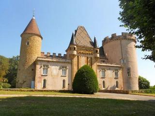 Annexe Chateau - Charmante maison, Chaintre