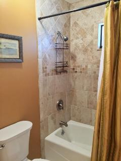 Master Bathroom Shower/Tub