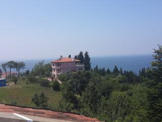 Sea and Nature View with a Great Terrace 1306, Yalova