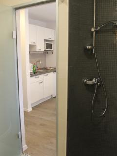 Bathroom with shower and kitchen area