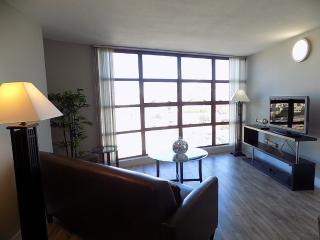 Furnished Apartment at Geary Blvd & Webster St San Francisco