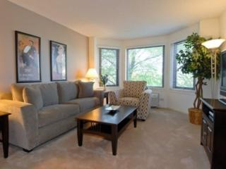 STUNNING AND BRILLIANTLY FURNISHED 2 BEDROOM APARTMENT IN NAPERVILLE, Naperville