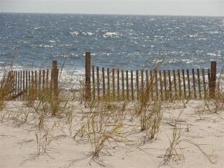 2/2 beachfront, ground level condo - premier site, Gulf Shores