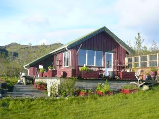 A cottage in the county  Mýrdalur in south Iceland