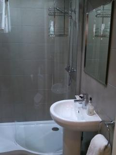 Bathroom with hand basin, toilet,; shower, and heated towel rail