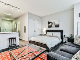 SPACIOUS AND MODERN STUDIO APARTMENT IN CHICAGO, Chicago