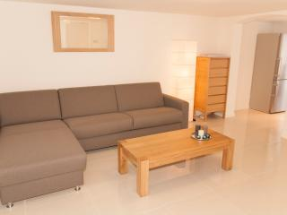Lovely, luxurious apartment with garden, Zandvoort