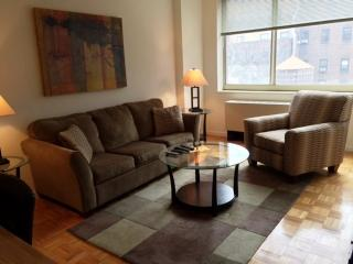 Modern and Well-Lit 1 Bedroom 1 Bathroom Apartment in New York, Nova York