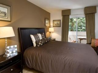 Superb Design 1 bedroom Apartment in Walnut Creek