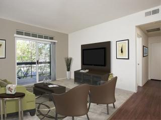 Clean and Bright 1 Bedroom Apartment in Dublin, San Ramon