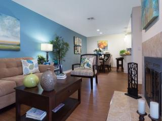 Modern and Convenient 1 Bedroom Apartment in Pleasanton