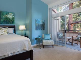 Stunning and Charming 2 Bedroom 2 Bathroom Apartment in Pleasanton