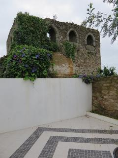 Yard with Castle Mannor Tower