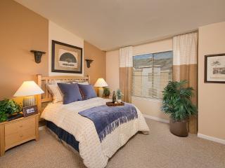 Stylish and Bright 1 Bedroom Apartment in Petaluma