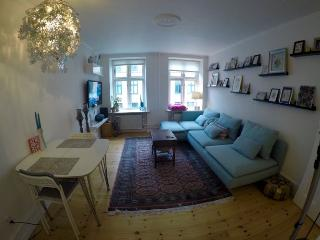 Classic Copenhagen apartment close to Tivoli Gardens