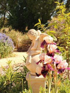 Garden cherubs