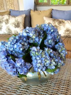 Hydrangeas and beautiful flowers always
