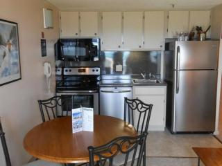 Lovely 1BR/1BA Steps from VIllage - Faces Lifts and Mountains - Wi-Fi, Snowshoe