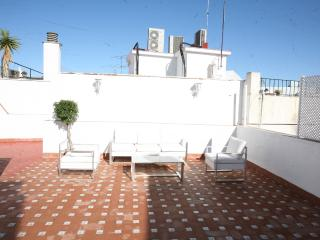 3 Bdroom Apartment, Big private Terrace, Sevilla