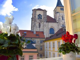 SPECIAL OFFER feb/march /Beautiful Spacious Old Town Apt with views - BOOK NOW!, Praga