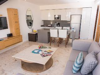 PET FRIENDLY & OCEAN VIEW, private rooftop & pool, Playa del Carmen